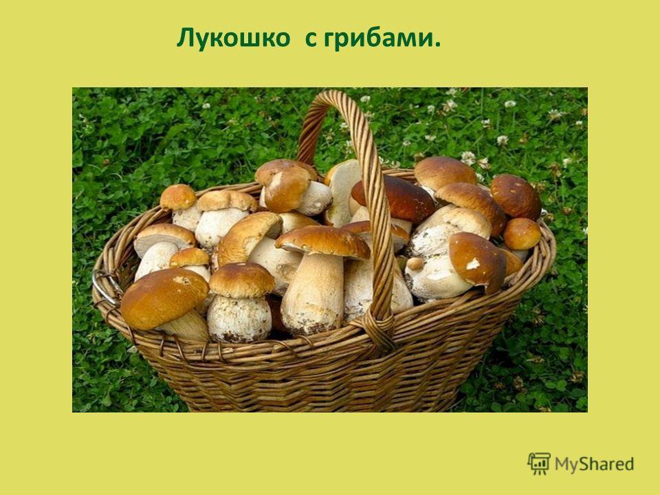 Лукошко с грибами.