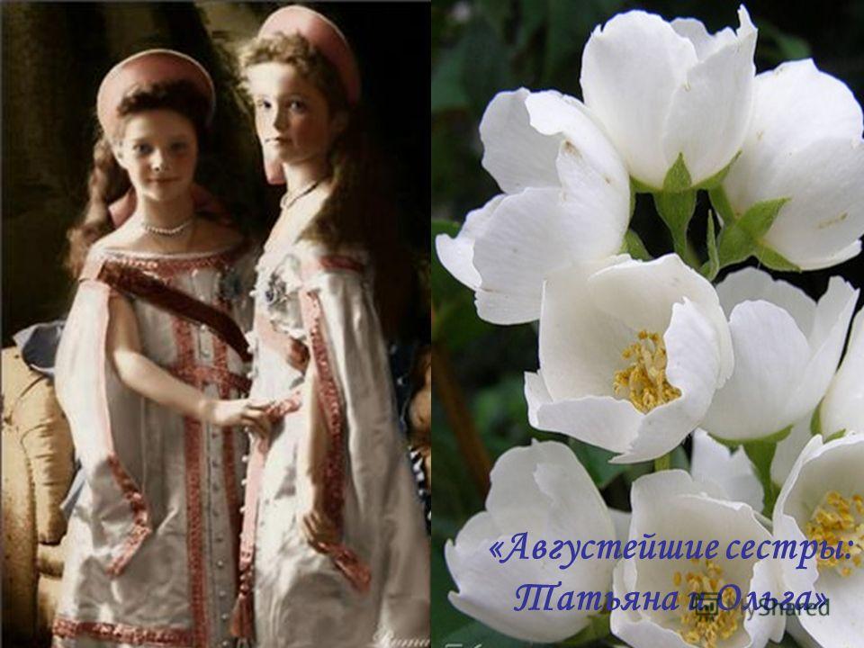 «Три любящих Друг Друга Сердца: Ольга, Татьяна, Мария»