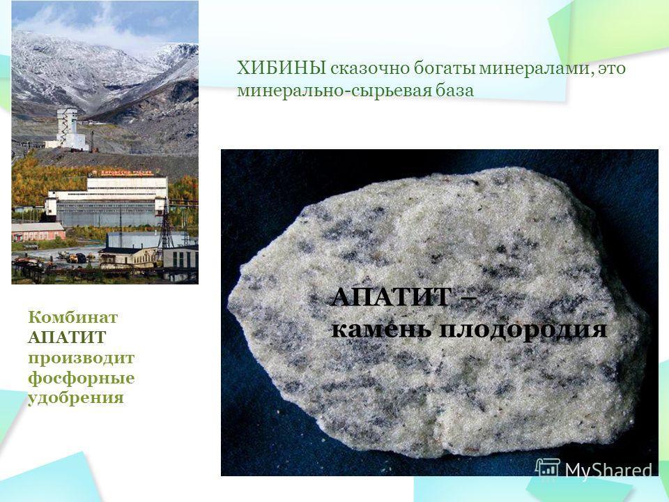 ХИБИНЫ сказочно богаты минералами, это минерально-сырьевая база АПАТИТ – камень плодородия Комбинат АПАТИТ производит фосфорные удобрения