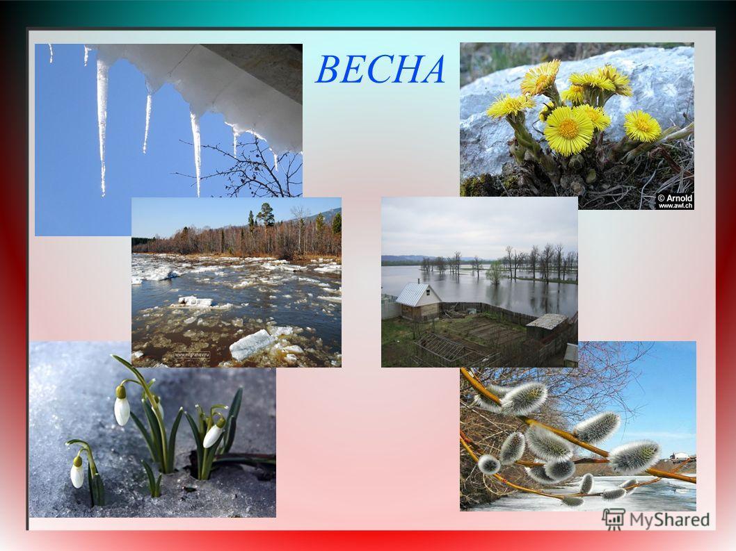 Картинки весны март апрель май