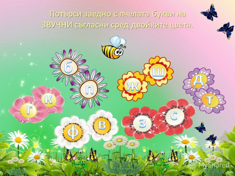 Потърси заедно с пчелата букви на ЗВУЧНИ съгласни сред двойките цветя.