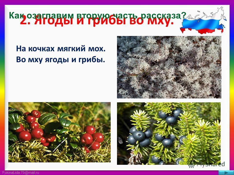 FokinaLida.75@mail.ru 2. Ягоды и грибы во мху. На кочках мягкий мох. Во мху ягоды и грибы. Как озаглавим вторую часть рассказа?