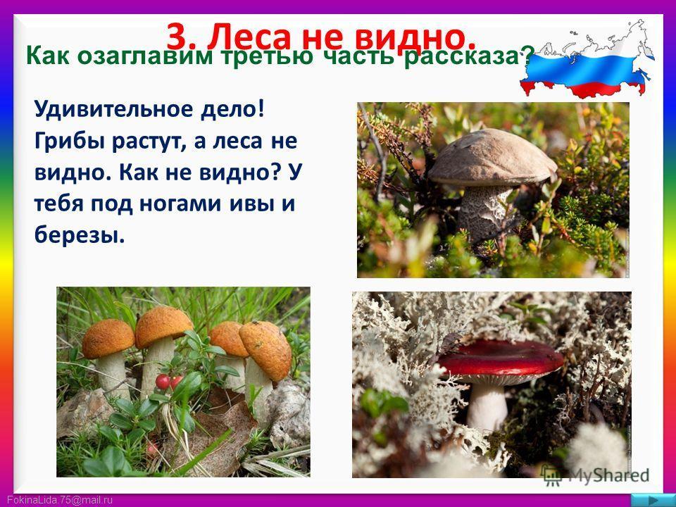 FokinaLida.75@mail.ru 3. Леса не видно. Удивительное дело! Грибы растут, а леса не видно. Как не видно? У тебя под ногами ивы и березы. Как озаглавим третью часть рассказа?