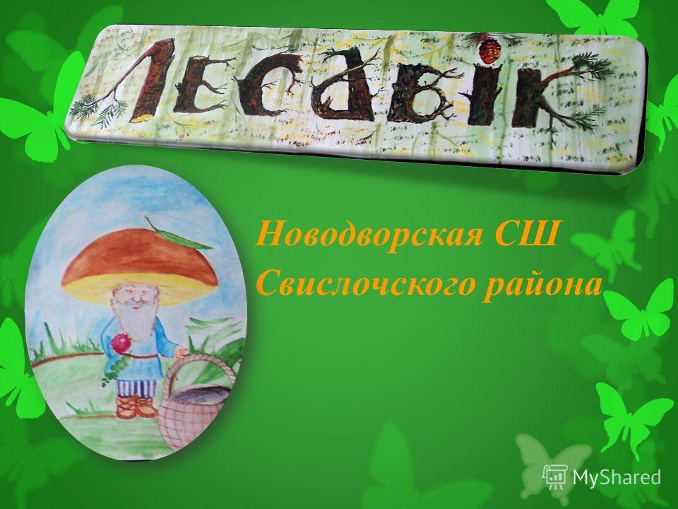 Новодворская СШ Свислочского района района