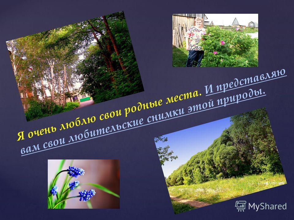 Недалеко от СИБНИИСхоза находится ОмскаяСельскохозяйственная Академия Академия