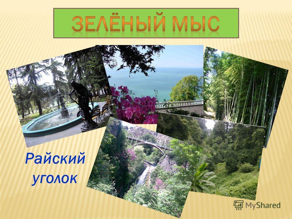 Автор стихов- Екатерина Кирилова.