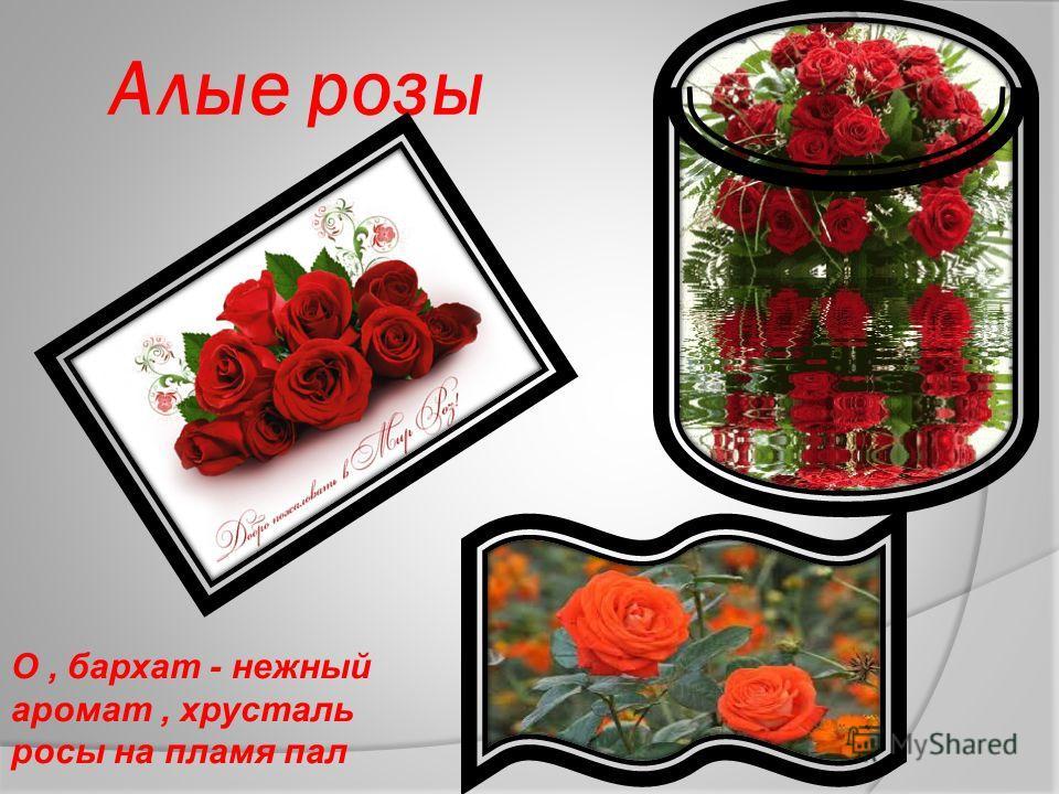 Презентация Людмилы Брижагиной Презентация Людмилы Брижагиной