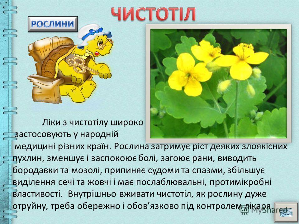 Черемха допомагає від багатьох хвороб і навіть відлякує своїм запахом кліщів. Квіти та листя виділяють величезну кількість лікувальних фітонцидів, які знищують в повітрі і в організмі патогенні мікроби. Обовязково принесіть букет квітучої черемхи дод