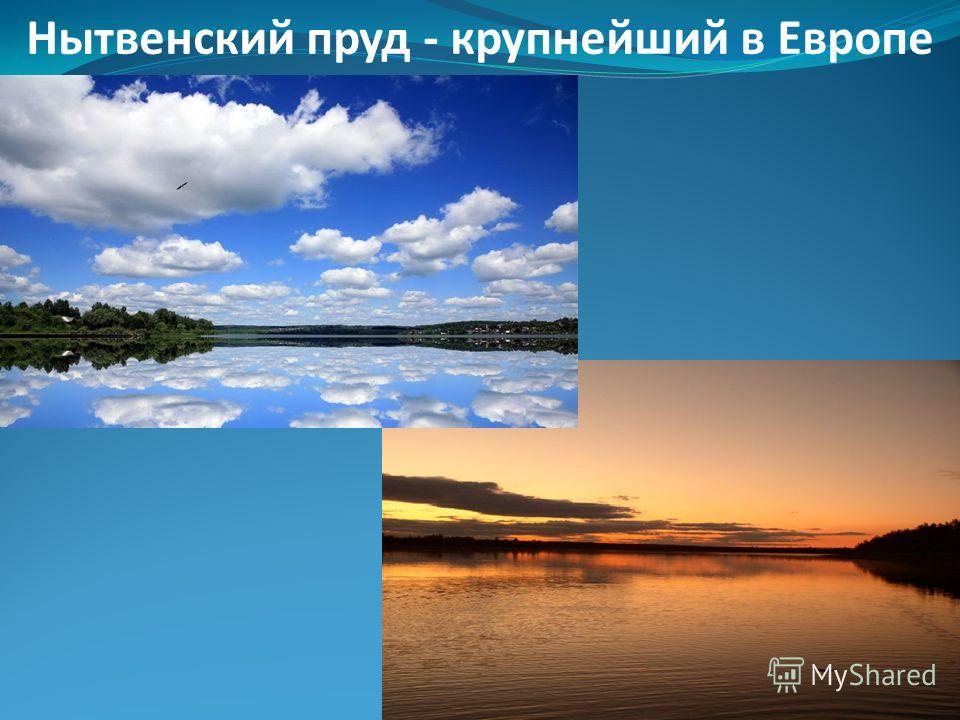 В моем городе находится «Музей ложки» - единственный в России, коллекция насчитывает более 1700 ложек.