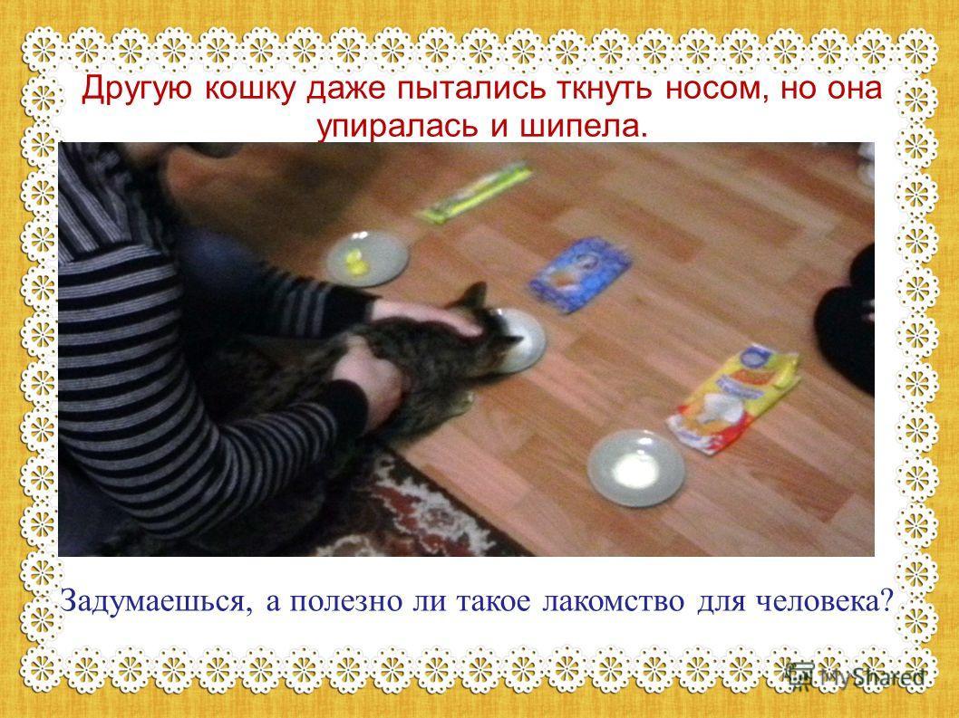 Другую кошку даже пытались ткнуть носом, но она упиралась и шипела. Задумаешься, а полезно ли такое лакомство для человека?