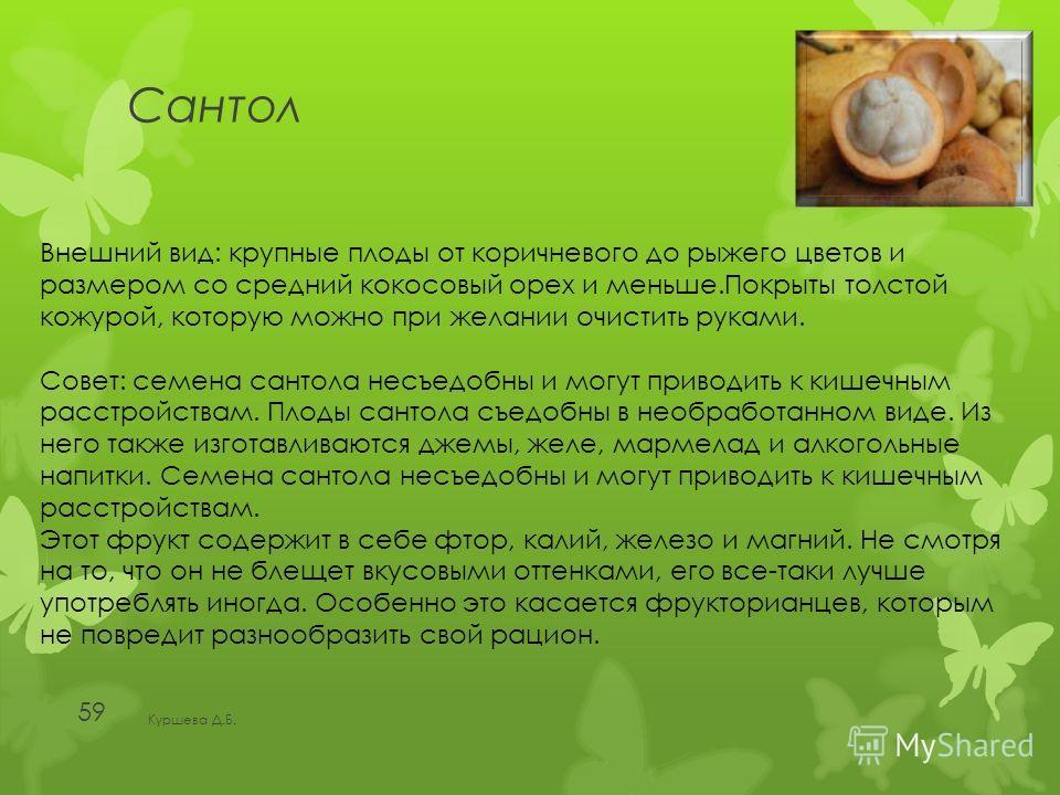 Сантол Куршева Д.Б. 59 Внешний вид: крупные плоды от коричневого до рыжего цветов и размером со средний кокосовый орех и меньше.Покрыты толстой кожурой, которую можно при желании очистить руками. Совет: семена сантола несъедобны и могут приводить к к