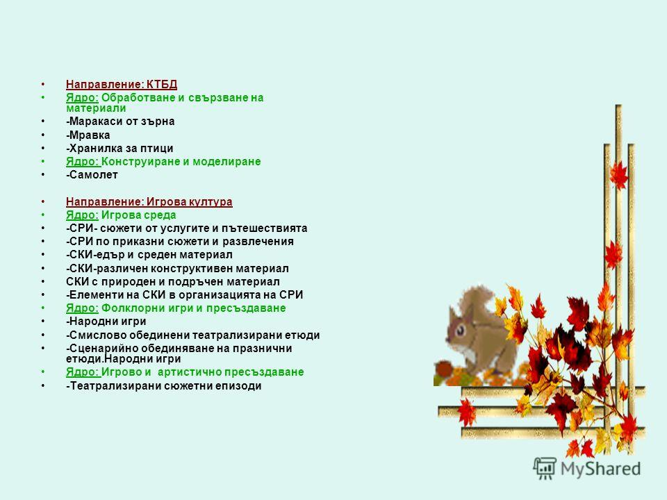 Направление: КТБД Ядро: Обработване и свързване на материали -Маракаси от зърна -Мравка -Хранилка за птици Ядро: Конструиране и моделиране -Самолет Направление: Игрова култура Ядро: Игрова среда -СРИ- сюжети от услугите и пътешествията -СРИ по приказ