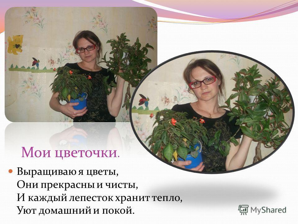 Мои цветочки. Выращиваю я цветы, Они прекрасны и чисты, И каждый лепесток хранит тепло, Уют домашний и покой.
