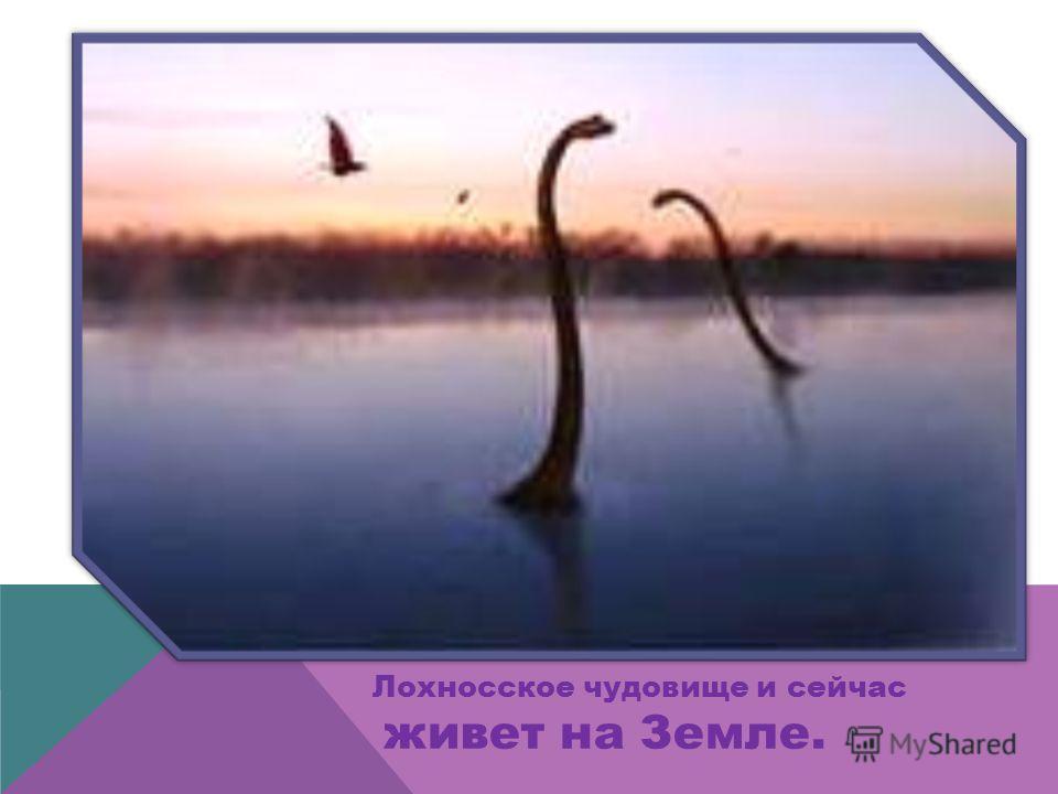… после удара метеорита Земля станет другой. Начнется Ледниковый период и динозавры погибнут.