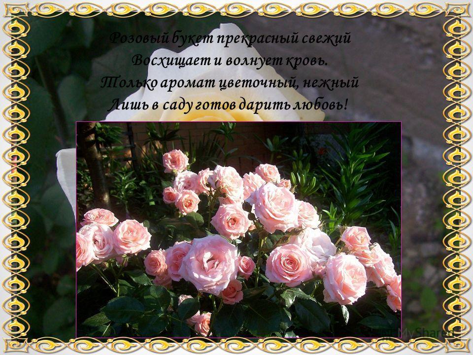 Розовый букет прекрасный свежий Восхищает и волнует кровь. Только аромат цветочный, нежный Лишь в саду готов дарить любовь!