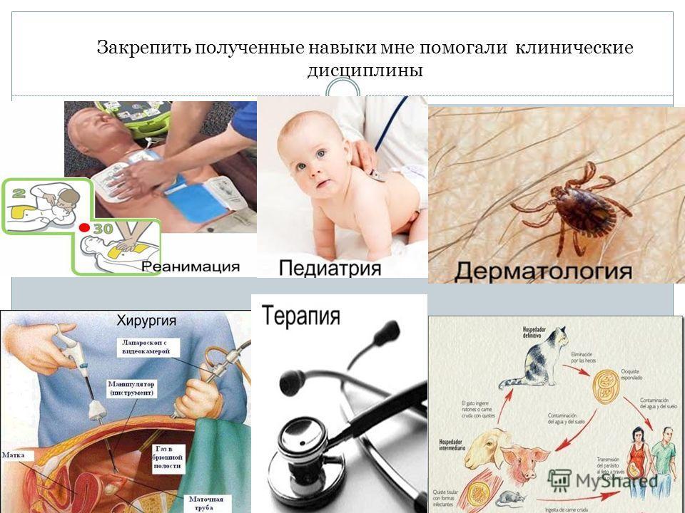 Закрепить полученные навыки мне помогали клинические дисциплины
