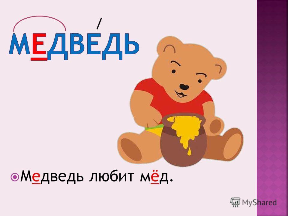 Медведь любит мёд.