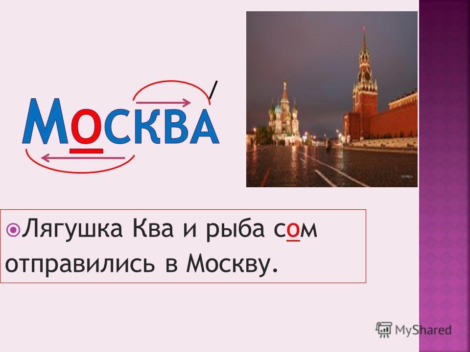 Лягушка Ква и рыба сом отправились в Москву.