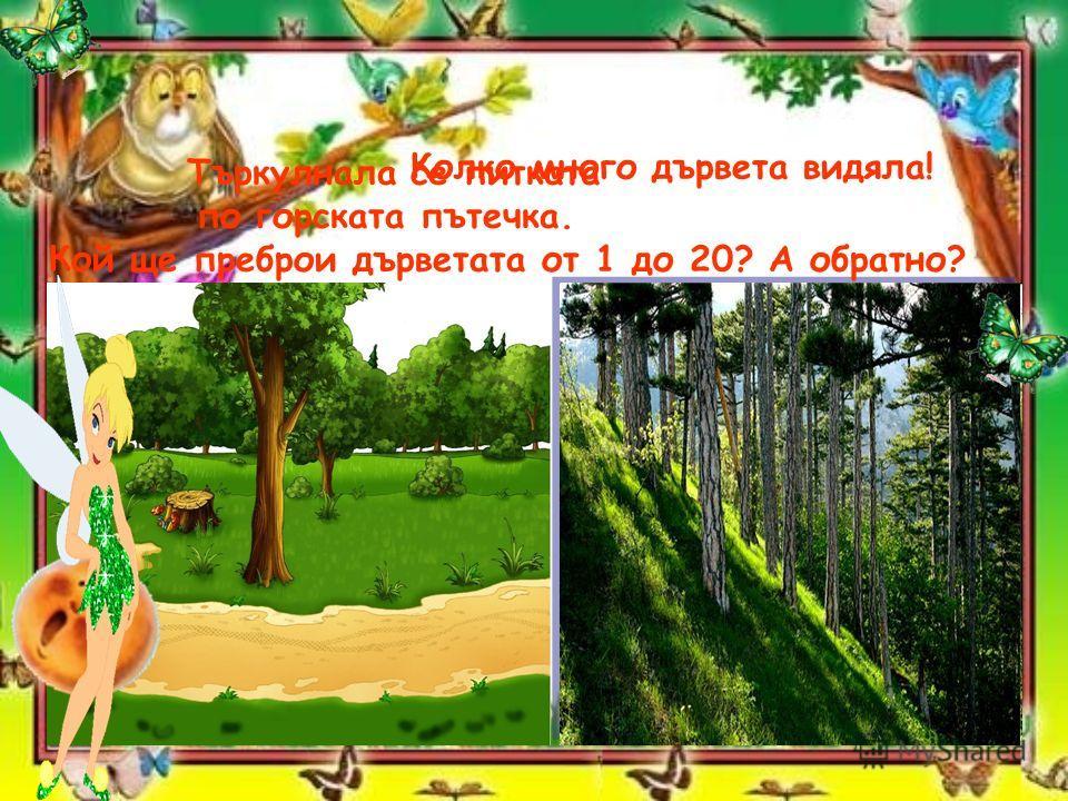 Търкулнала се питката по горската пътечка. Колко много дървета видяла! Кой ще преброи дърветата от 1 до 20? А обратно?