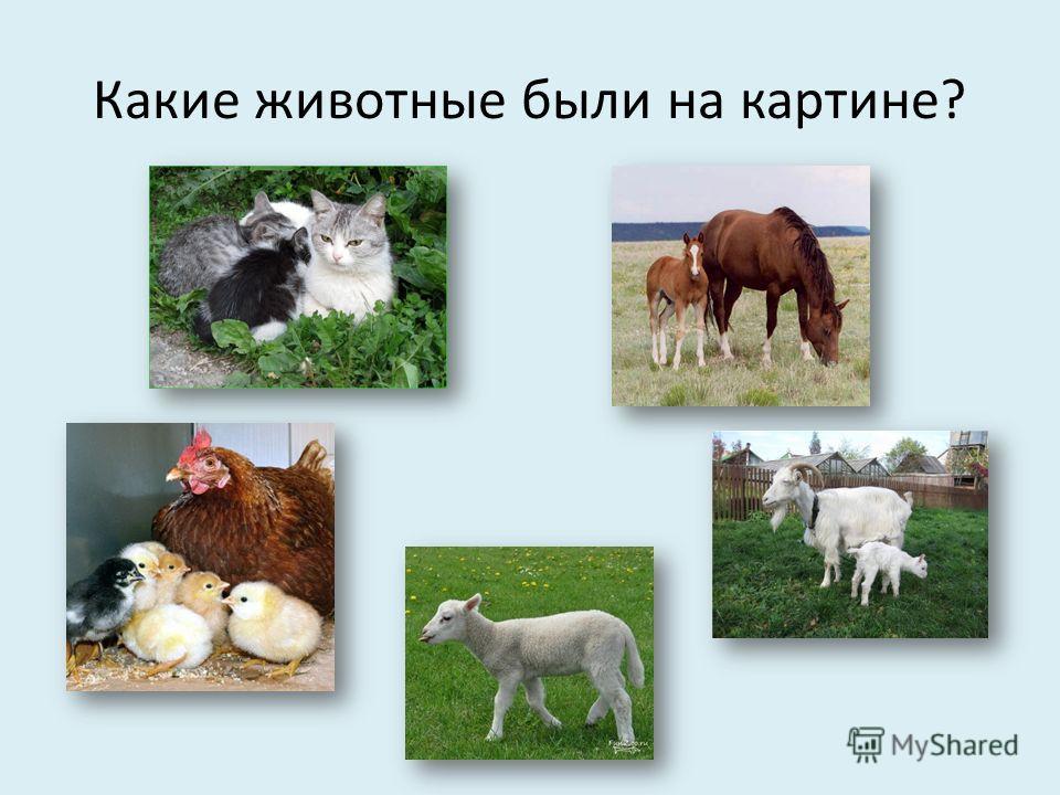 Какие животные были на картине?