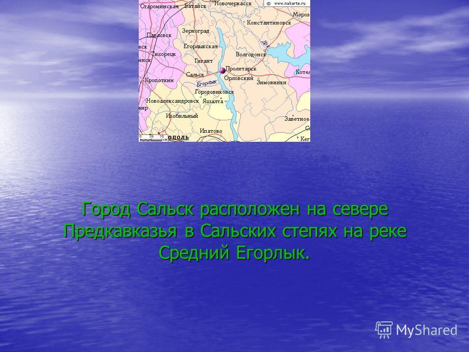Город Сальск расположен на севере Предкавказья в Сальских степях на реке Средний Егорлык.