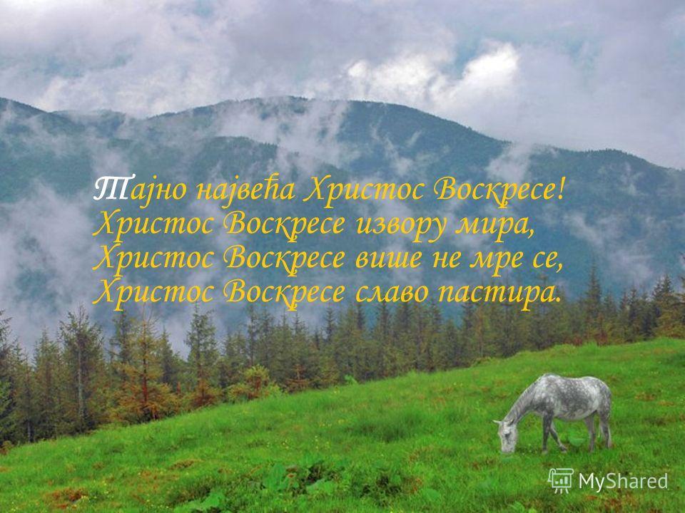 Тајно највећа Христос Воскресе! Христос Воскресе извору мира, Христос Воскресе више не мре се, Христос Воскресе славо пастира.