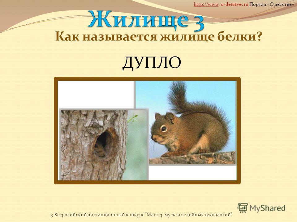 Как называется жилище лисы? НОРА 3 Всеросийский дистанционный конкурс Мастер мультимедийных технологий http://wwwhttp://www. o-detstve. ru Портал «О детстве»