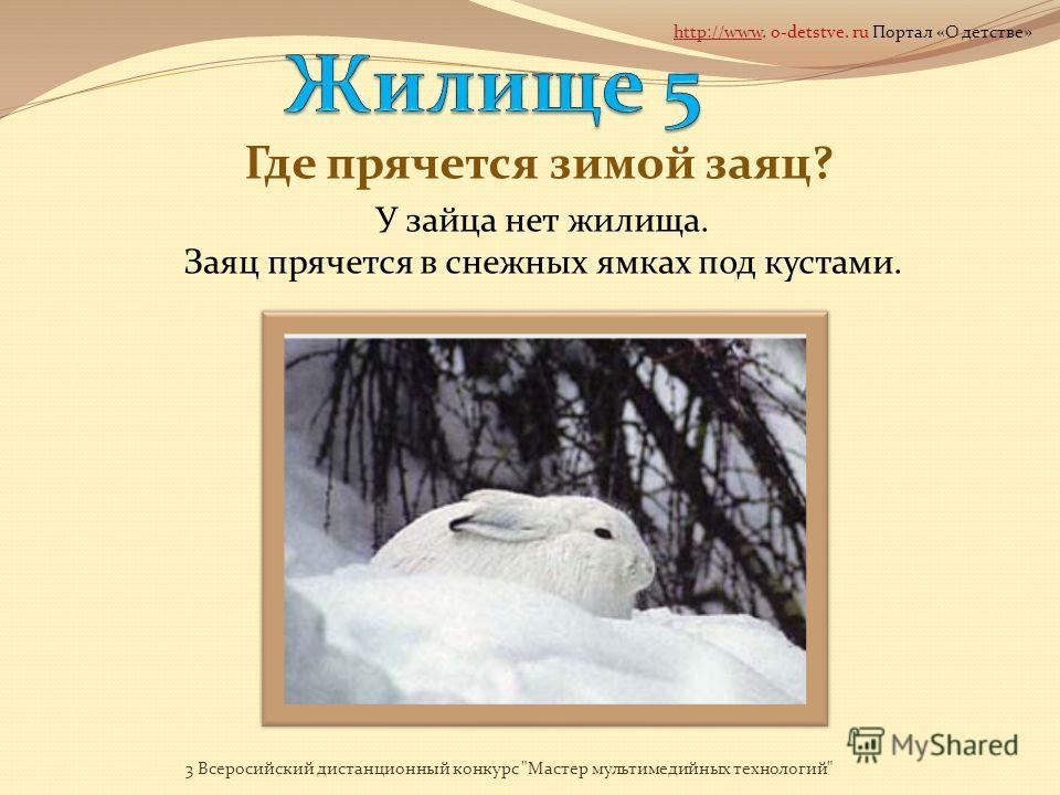 Как называется жилище волка? ЛОГОВО 3 Всеросийский дистанционный конкурс Мастер мультимедийных технологий http://wwwhttp://www. o-detstve. ru Портал «О детстве»