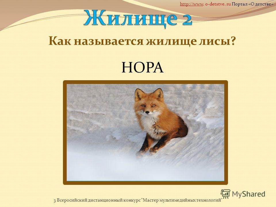 Как называется жилище медведя? 3 Всеросийский дистанционный конкурс Мастер мультимедийных технологий http://wwwhttp://www. o-detstve. ru Портал «О детстве»