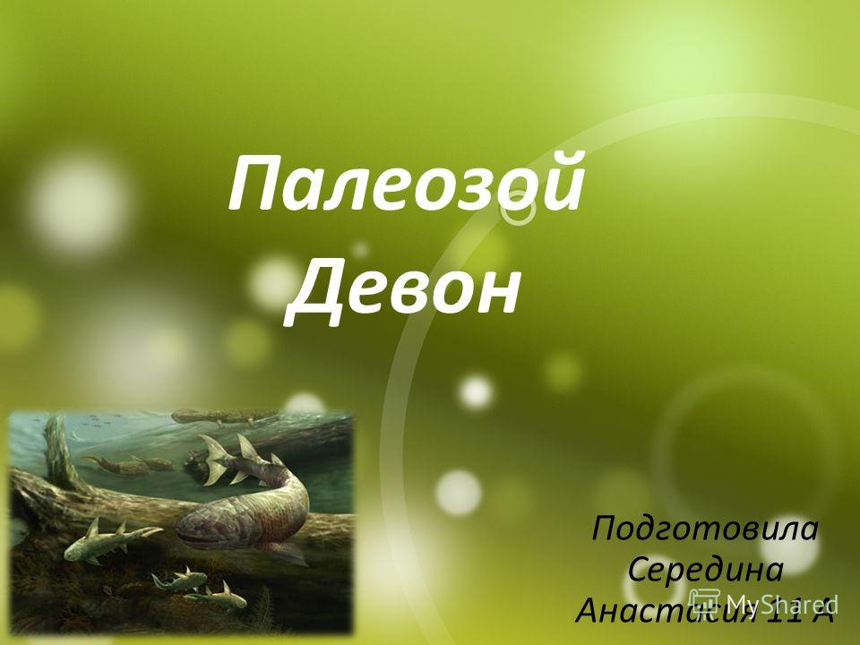 Палеозой Девон Подготовила Середина Анастасия 11 А