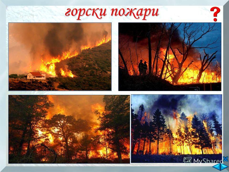горски пожари