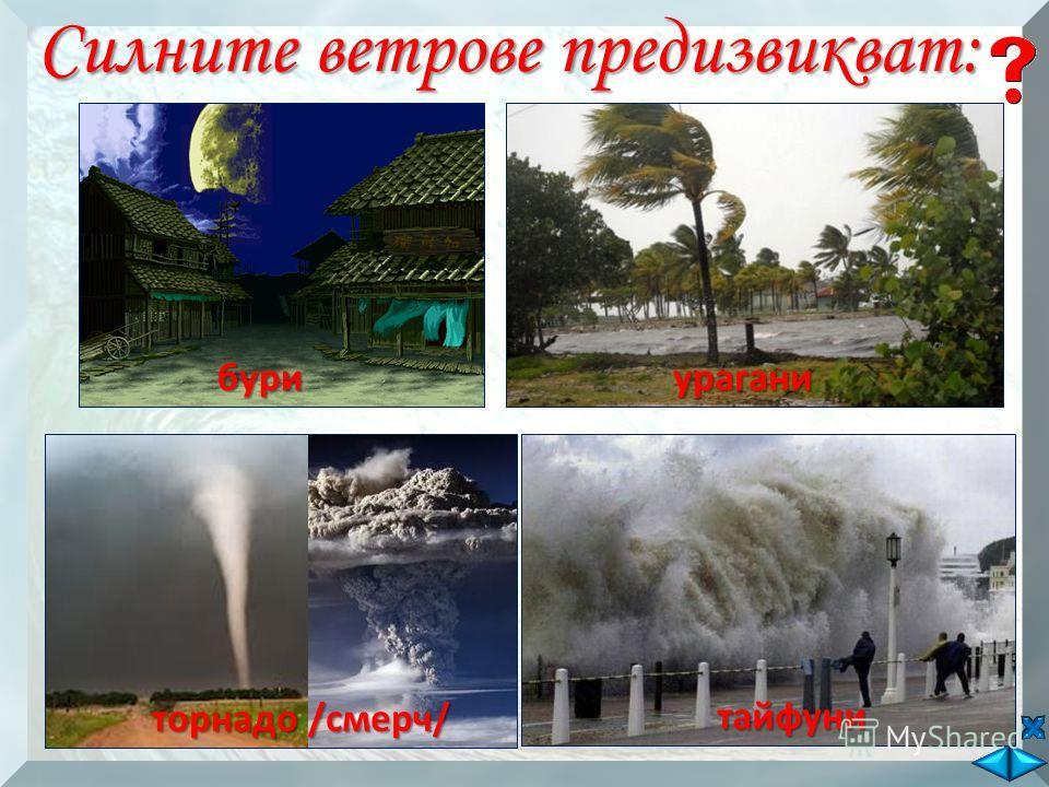 Силните ветрове предизвикват: буриурагани торнадо /смерч/ тайфуни