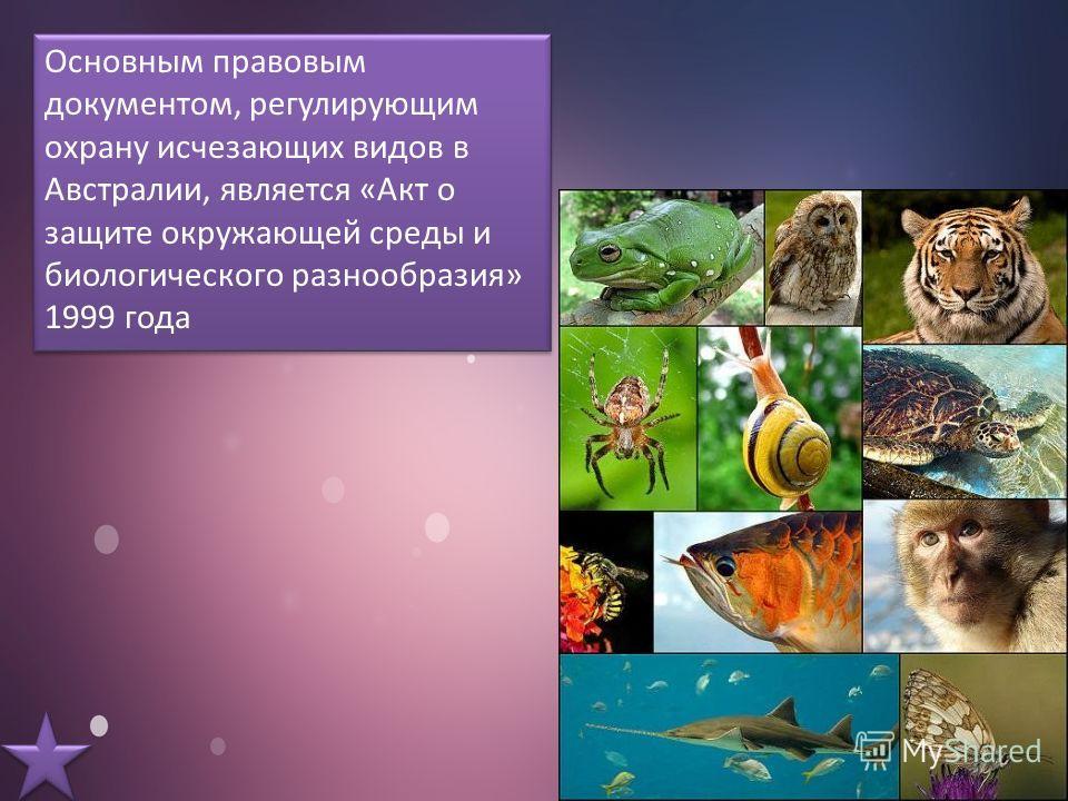 Основным правовым документом, регулирующим охрану исчезающих видов в Австралии, является «Акт о защите окружающей среды и биологического разнообразия» 1999 года