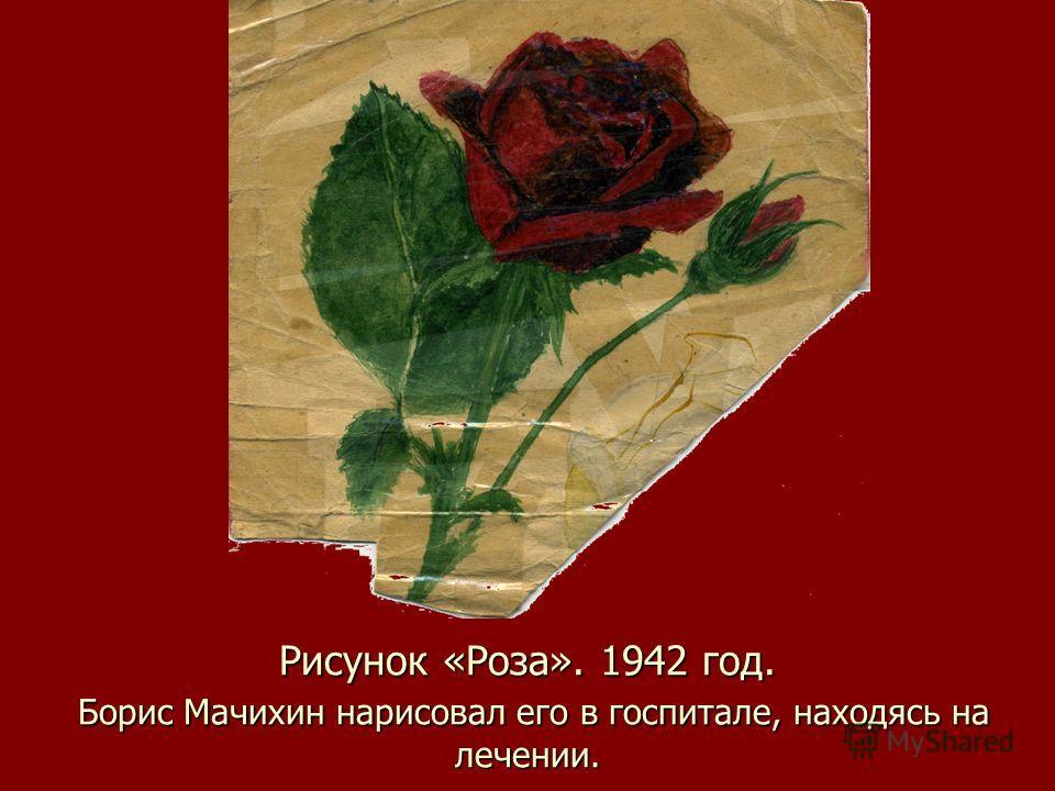 Рисунок «Роза». 1942 год. Борис Мачихин нарисовал его в госпитале, находясь на лечении.