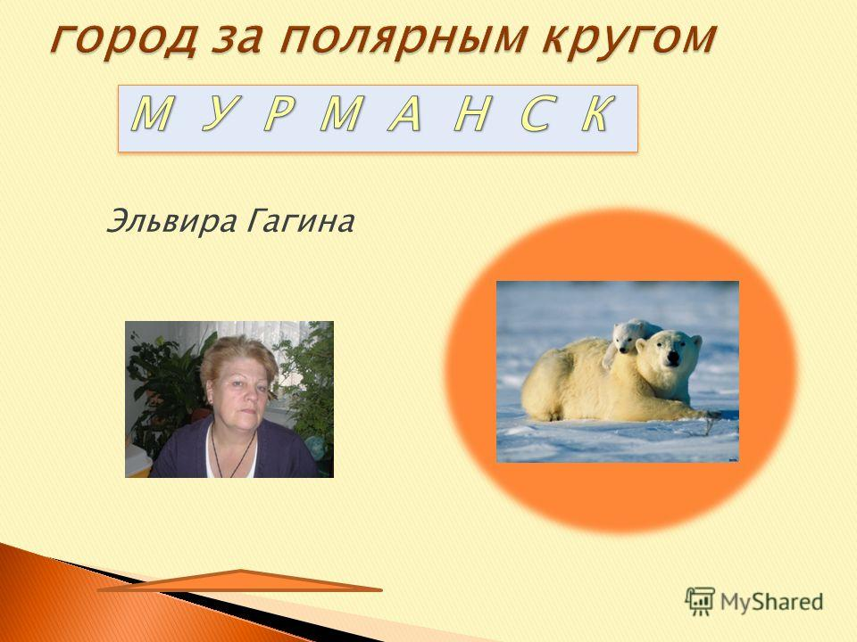 Учебная презентация год 2013