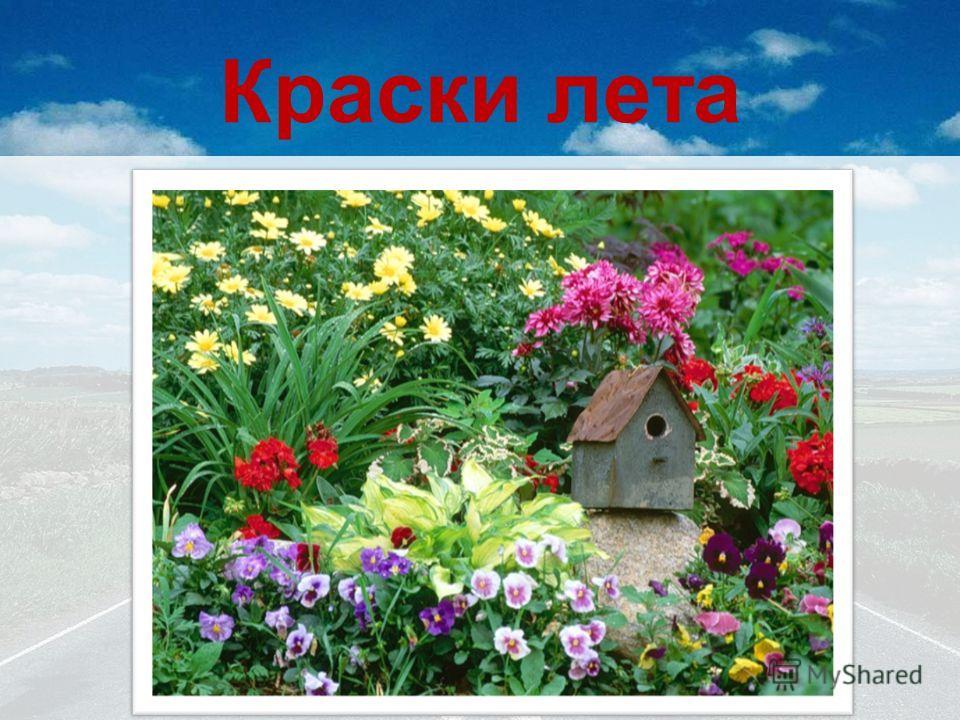 Краски лета