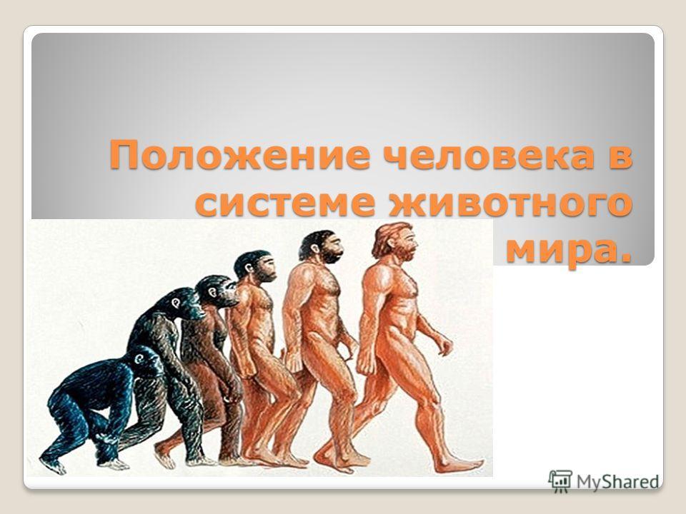 Положение человека в системе животного мира.