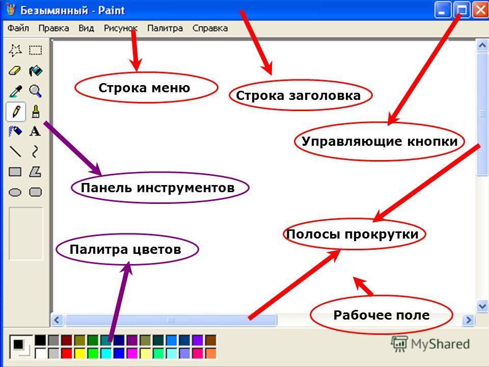 Строка заголовка Строка меню Панель инструментов Палитра цветов Полосы прокрутки Управляющие кнопки Рабочее поле