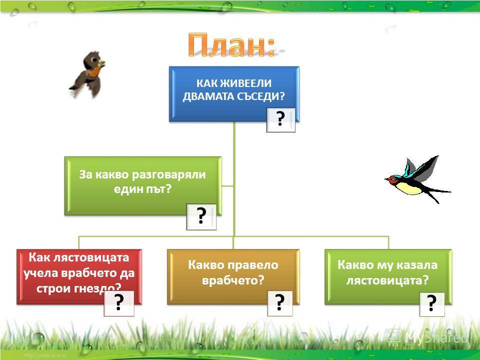 КАК ЖИВЕЕЛИ ДВАМАТА СЪСЕДИ? ? Как лястовицата учела врабчето да строи гнездо? ? Какво правело врабчето? ? Какво му казала лястовицата? ? За какво разговаряли един път? ?