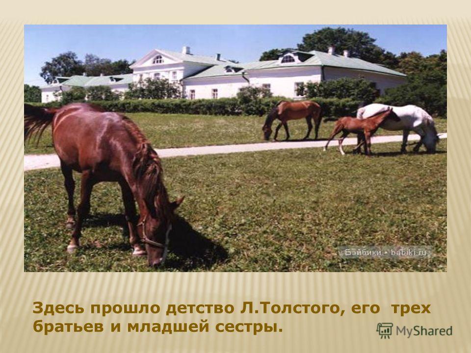 Здесь прошло детство Л.Толстого, его трех братьев и младшей сестры.