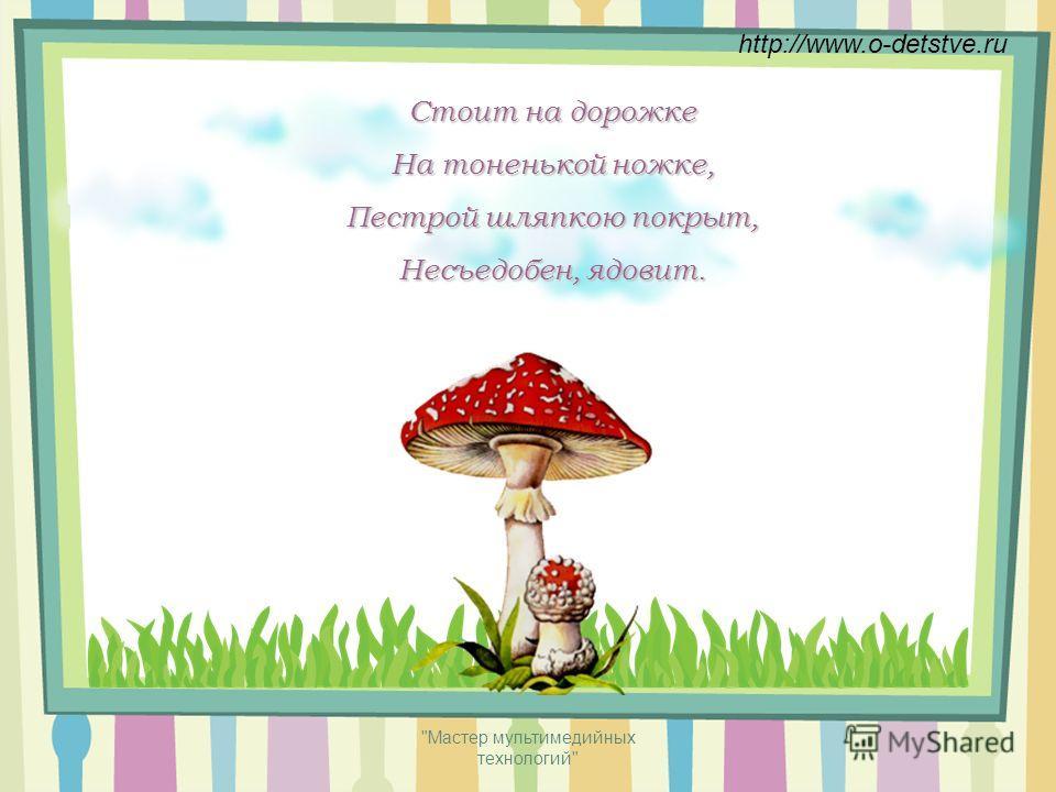 Мастер мультимедийных технологий БелыйМухомор Лисичка http://www.o-detstve.ru