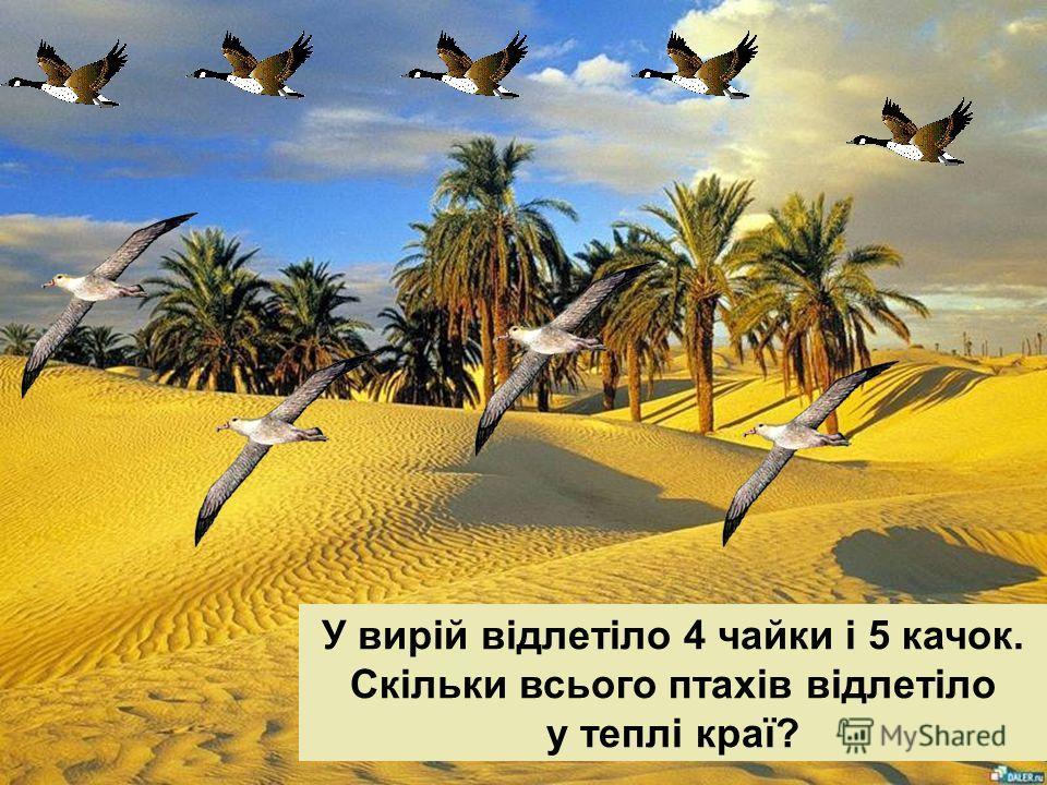 У вирій відлетіло 4 чайки і 5 качок. Скільки всього птахів відлетіло у теплі краї?