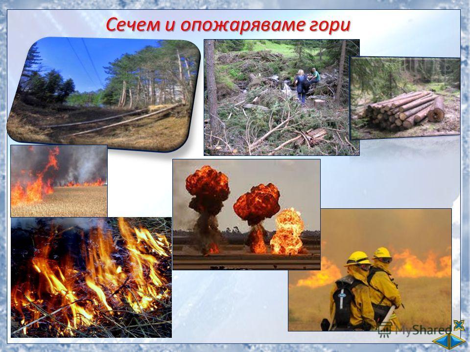 Сечем и опожаряваме гори