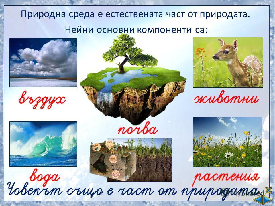 Природна среда е естествената част от природата. Нейни основни компоненти са: