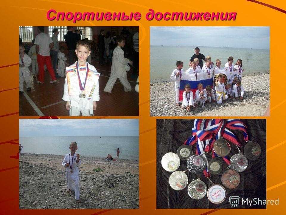 Спортивные достижения