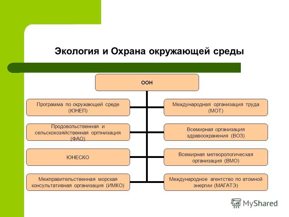 Экология и Охрана окружающей среды ООН Программа по окружающей среде (ЮНЕП) Международная организация труда (МОТ) Продовольственная и сельскохозяйственная оргпнизация (ФАО) Всемирная организация здравоохранения (ВОЗ) ЮНЕСКО Всемирная метеорологическа