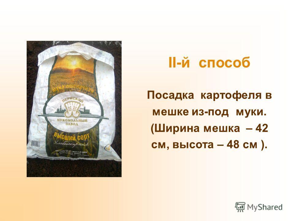 II-й способ Посадка картофеля в мешке из-под муки. (Ширина мешка – 42 см, высота – 48 см ).