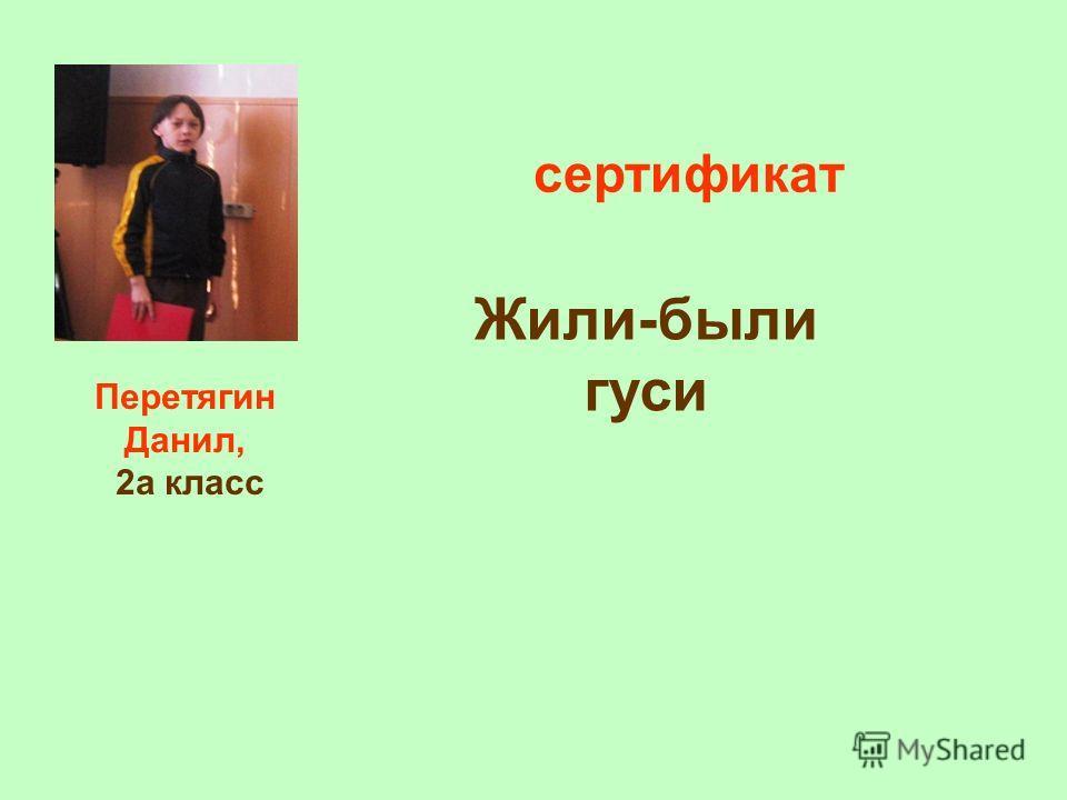 Перетягин Данил, 2а класс сертификат Жили-были гуси