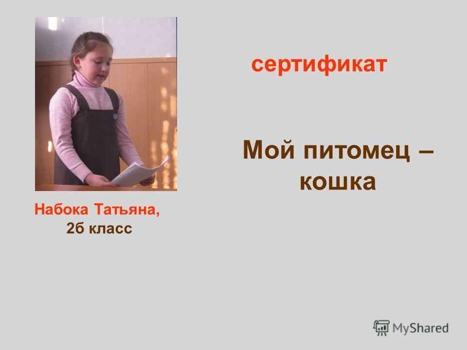 Набока Татьяна, 2б класс сертификат Мой питомец – кошка