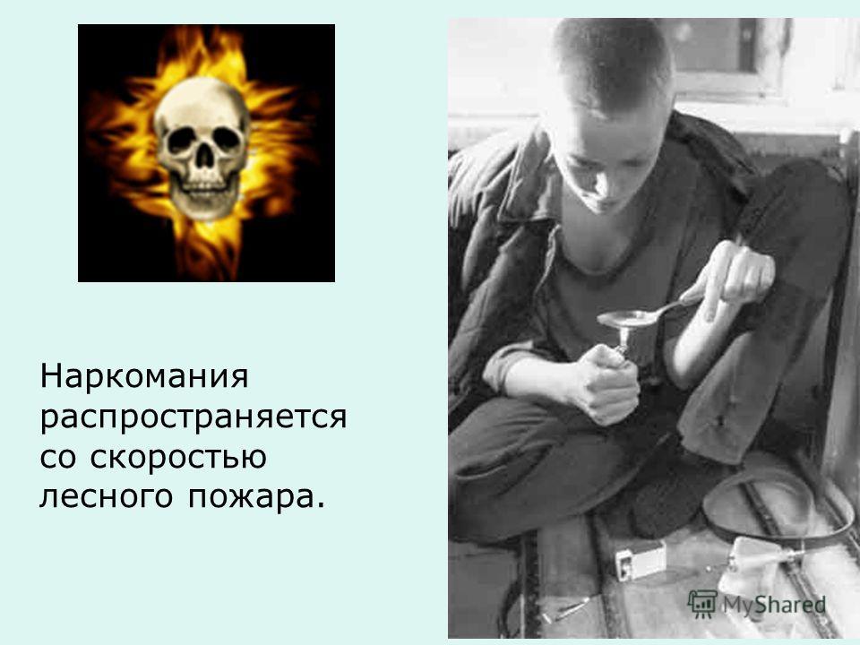 Наркомания распространяется со скоростью лесного пожара.